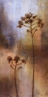 "New Spring Light II by Michael Marcon - 12"" x 24"""