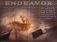"Endeavor - 24"" x 18"""