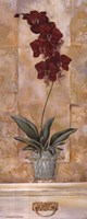 "Orchid Panel II by Richard Henson - 8"" x 20"" - $9.49"