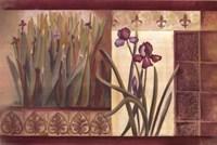 Iris Fantasy Fine Art Print