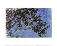 "12"" x 9"" Monet Florals"