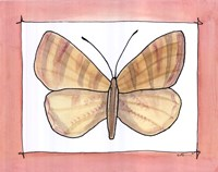 "Moth by Serena Bowman - 14"" x 11"""
