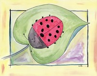 "14"" x 11"" Ladybug Pictures"