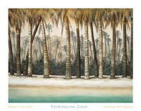 Tourmaline Coast Fine Art Print