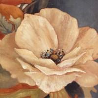 In Full Bloom II Framed Print