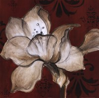 Amaryllis on Red II Fine Art Print