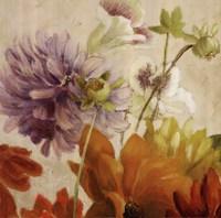 Early Bloomers II Framed Print