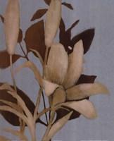"""Foliage on Teal I by Lanie Loreth - 16"""" x 20"""""""