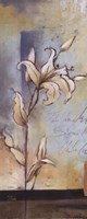 """White Lilies II by Patricia Pinto - 8"""" x 20"""" - $9.99"""