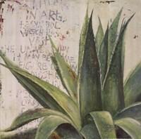 Aloe I Fine Art Print