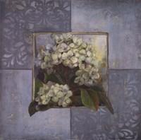 "Hydrangeas on Blue II by Patricia Pinto - 20"" x 20"""