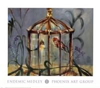 Endemic Medley I Fine Art Print