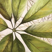 Fresh Leaves II Fine Art Print