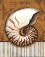 Vintage Shell I - mini Fine Art Print