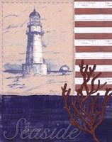 American Coastal II Framed Print