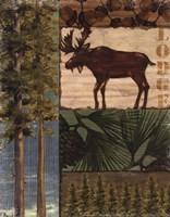 Nature Trail I Framed Print