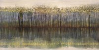 Riverbank Reflections Fine Art Print