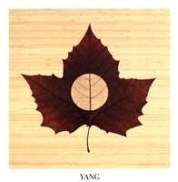 "Yang/Bamboo by Owen Mortensen - 20"" x 22"""