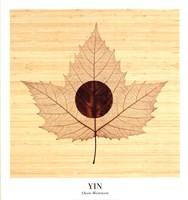 Yin/Bamboo Fine Art Print