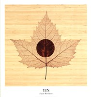 "Yin/Bamboo by Owen Mortensen - 20"" x 22"""