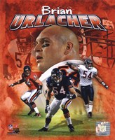 Brian Urlacher 2011 Portrait Plus Fine Art Print