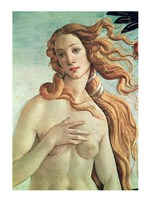 Venus, detail from The Birth of Venus, c.1485 Fine Art Print