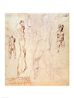 Anatomical drawings with accompanying notes by Michelangelo Buonarroti - various sizes - $16.49