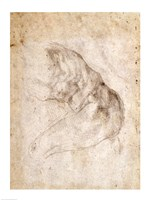 Study for The Creation of Adam