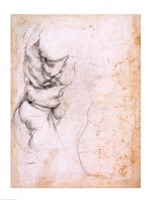 Study of torso and buttock by Michelangelo Buonarroti - various sizes, FulcrumGallery.com brand