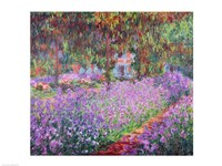 The Artist's Garden at Giverny, 1900 Framed Print