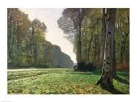 The Road to Bas-Breau, Fontainebleau (Le Pave de Chailly), c.1865 Fine Art Print