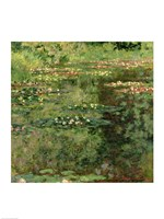 The Waterlily Pond, 1904 by Claude Monet, 1904 - various sizes