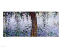 Waterlilies: Morning with Weeping Willows, detail of the right section, 1915-26 Framed Print