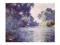 Branch of the Seine near Giverny, 1897 detail Fine Art Print