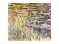 Reflections on the Water, 1917 by Claude Monet, 1917 - various sizes, FulcrumGallery.com brand