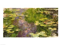 Waterlilies (green horizontal) Fine Art Print
