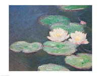 Waterlilies, Evening; detail by Claude Monet - various sizes
