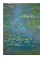 Waterlilies, detail, 1903 Fine Art Print