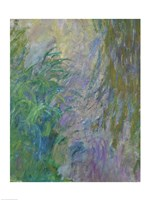 Waterlilies (green & purple) by Claude Monet - various sizes