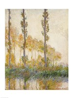 The Three Trees, Autumn, 1891 by Claude Monet, 1891 - various sizes