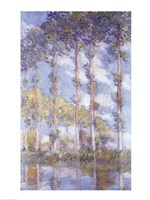 The Poplars, 1881 Fine Art Print