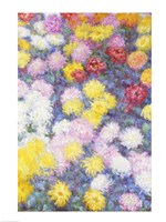 Chrysanthemums - vertical, 1897 by Claude Monet, 1897 - various sizes