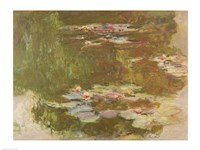 Water Lilies, Reflected Willow, 1920 by Claude Monet, 1920 - various sizes, FulcrumGallery.com brand