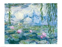 Waterlilies-19, 1916 by Claude Monet, 1916 - various sizes, FulcrumGallery.com brand