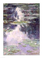 Pond with Water Lilies, 1907 Fine Art Print