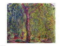 Weeping Willow-19, 1918 by Claude Monet, 1918 - various sizes
