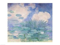 Waterlilies, 1914-17 reflection Fine Art Print