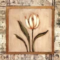 Del Sol V Fine Art Print