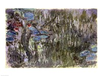 Waterlilies with Reflections of Willows, c.1920 Fine Art Print