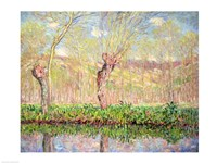 Spring, River Bank at Epte, 1885 by Claude Monet, 1885 - various sizes